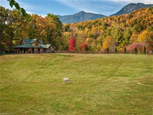Tiny photo for 4957 HWY 80 None S, Burnsville, NC 28714 (MLS # 3288743)