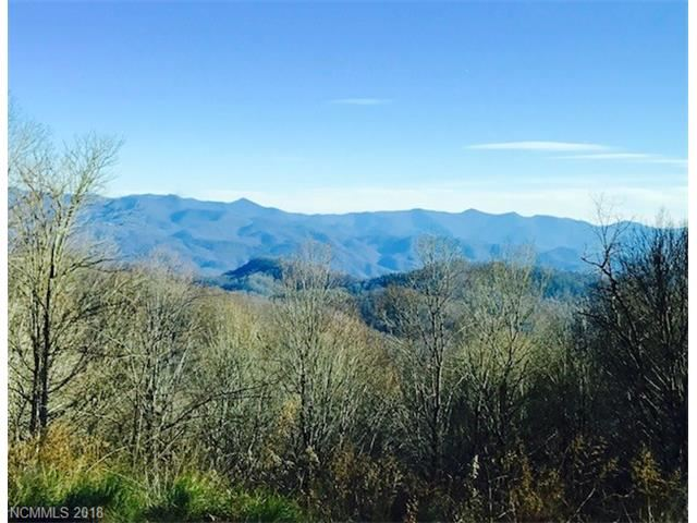 Photo for 0000 Airport Road, Mars Hill, NC 28754 (MLS # 3349757)