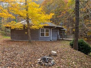 Tiny photo for 1718 Howard Moore Road, Hot Springs, NC 28743 (MLS # 3338759)