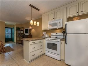 Tiny photo for 160 Whitney Boulevard #1, Lake Lure, NC 28746 (MLS # 3336763)
