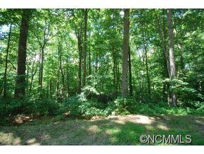 Photo of 25 Poplar Crest Drive #25, Pisgah Forest, NC 28768 (MLS # NCM587771)