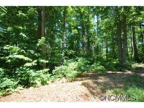 Photo of 27 Open Ridge Trail #27, Pisgah Forest, NC 28768 (MLS # NCM587788)