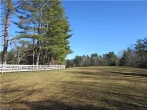 Photo of 0 Pleasant Hill Drive #6, Hendersonville, NC 28739 (MLS # 3342789)