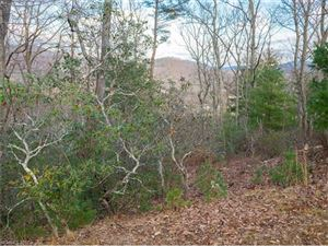 Tiny photo for 133 Boulder Creek Way #11, Asheville, NC 28805 (MLS # 3341793)