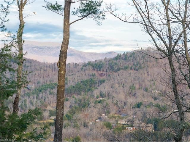 Photo for 133 Boulder Creek Way #11, Asheville, NC 28805 (MLS # 3341793)