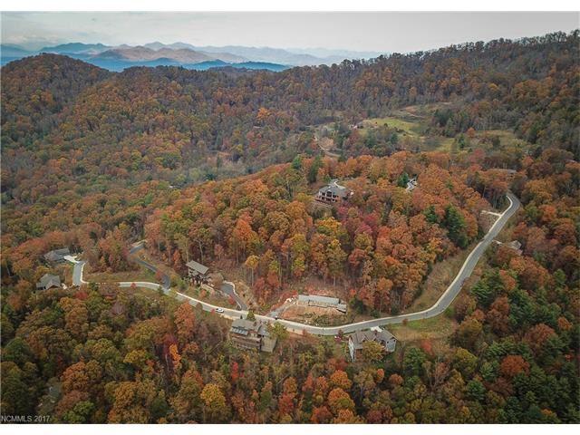 Photo for 85 Boulder Creek Way #19, Asheville, NC 28805 (MLS # 3341809)