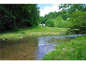 Tiny photo for 8181 NC 209 Highway, Hot Springs, NC 28743 (MLS # 3286842)
