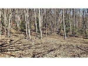 Photo of 0000 Parchment Lane #5-4, Sylva, NC 28779 (MLS # 3264845)