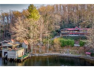 Tiny photo for 1308 S Lake Summit Road S #1010769, Saluda, NC 28773 (MLS # 3343846)