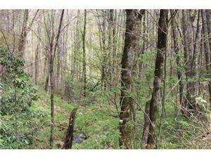 Photo of 0000 Big Spring Trail #61, Qualla, NC 28719 (MLS # 3253867)