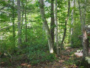 Photo of 0000 Lot 85 Firefly Trail, Marshall, NC 28753 (MLS # 3292875)