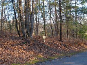 Tiny photo for 22 Running Fox Road #22, Sapphire, NC 28774 (MLS # 3348881)