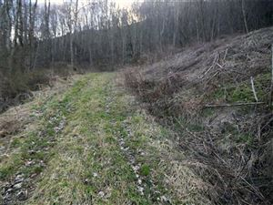 Tiny photo for Lot 5 Blazing Star Lane, Clyde, NC 28721 (MLS # 3306897)