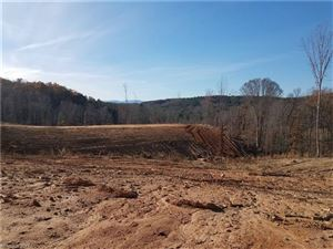 Photo of 00 County Line Road, Mill Spring, NC 28756 (MLS # 3347897)