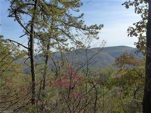 Photo of 3851 East Fork Road, Brevard, NC 28712 (MLS # 3348903)
