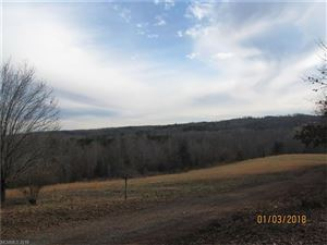 Tiny photo for 1633 Jim Page Road, Columbus, NC 28722 (MLS # 3347927)