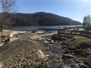 Tiny photo for 120 & 121 Red Wing Road #120 & 121, Lake Lure, NC 28746 (MLS # 3350927)