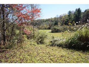 Tiny photo for 2768 Tanasee Gap Road, Balsam Grove, NC 28708 (MLS # 3330929)