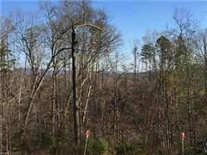 Tiny photo for 419 Travelers Rest Lane #18, Rutherfordton, NC 28139 (MLS # 3347929)