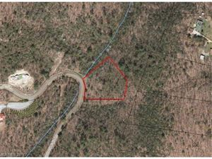 Photo of 983 Pinnacle Falls Lane #19R, Zirconia, NC 28790 (MLS # 3338935)