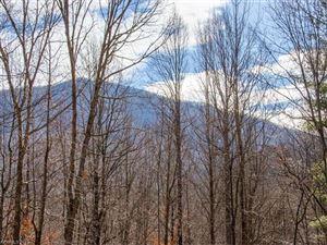 Tiny photo for 369 Fern Trail, Waynesville, NC 28786 (MLS # 3346940)