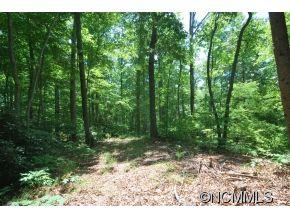 Photo of 29/30 Open Ridge Trail #29-30, Pisgah Forest, NC 28768 (MLS # NCM587944)