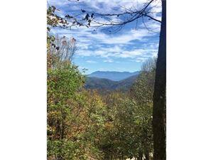 Tiny photo for 622 Trillium Lane, Mars Hill, NC 28754 (MLS # 3326955)