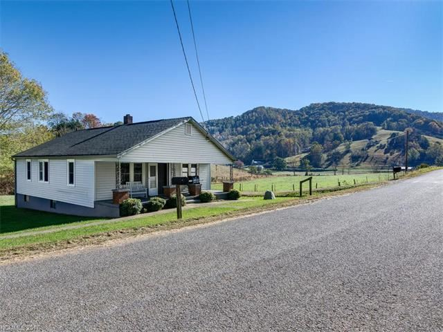 Photo for 65 Brooks Branch Road, Leicester, NC 28748 (MLS # 3331956)