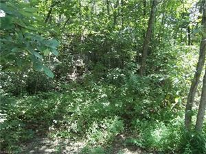 Tiny photo for 00 Gilliam Mountain Road, Hendersonville, NC 28792 (MLS # 3327967)