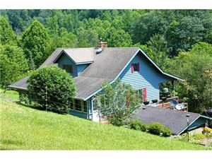 Tiny photo for 378 Howard Moore Road, Hot Springs, NC 28743 (MLS # 3238968)