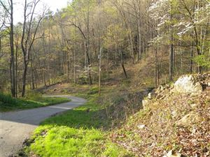 Tiny photo for Lot 17 Horse Cove Road, Canton, NC 28716 (MLS # 3349974)