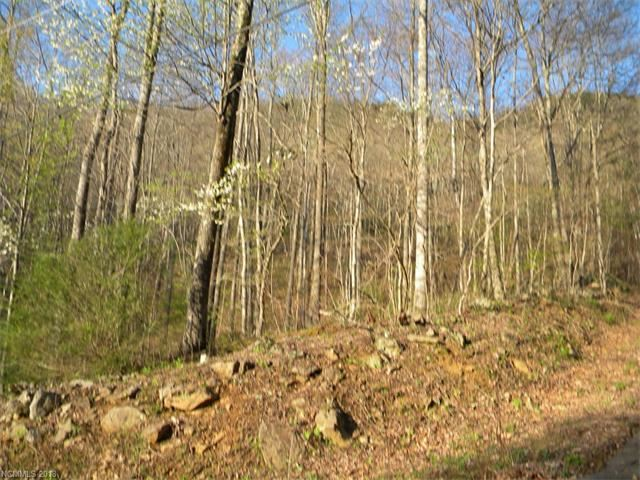 Photo for Lot 17 Horse Cove Road, Canton, NC 28716 (MLS # 3349974)