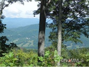 Photo of 1300 Elk Mountain Scenic Highway, Asheville, NC 28804 (MLS # NCM569975)