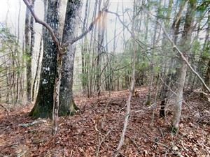 Tiny photo for xx See Off Mountain Road, Brevard, NC 28712 (MLS # 3349977)