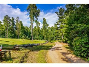 Tiny photo for 2925 Reserve Road #6B, Pisgah Forest, NC 28768 (MLS # 3153989)