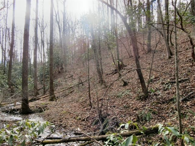 Photo for xx See Off Mountain Road, Brevard, NC 28712 (MLS # 3349996)