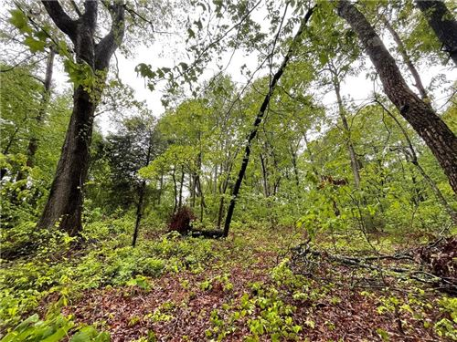 Photo of 00 Pink Dill Mill Road, Greer, SC 29651 (MLS # 20238818)