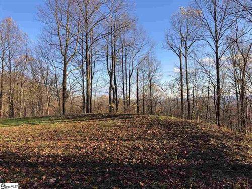 Photo of 275 Lost Trail Drive, Landrum, SC 29356 (MLS # 20240999)