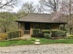 Photo of 599 Squaw Run Rd, ELLWOOD CITY, PA 16117 (MLS # 1392112)