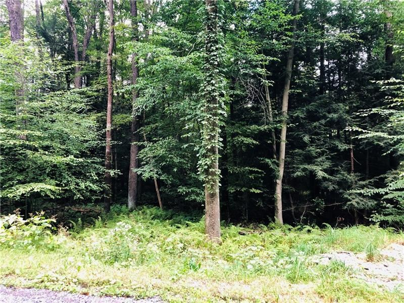 Photo of 0 Indian Drive -  Lot #316, Central City, PA 15541 (MLS # 1467757)