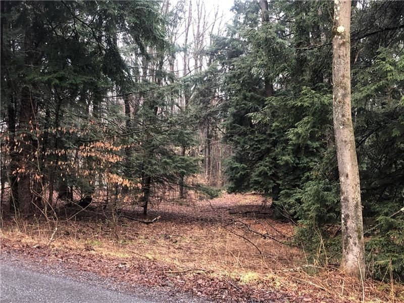 Photo of 191 W Airpark lot A43, Central City, PA 15926 (MLS # 1436874)