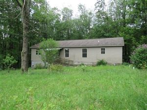 Photo of 98 Muir Road, BLAIRSVILLE, PA 15717 (MLS # 1401896)