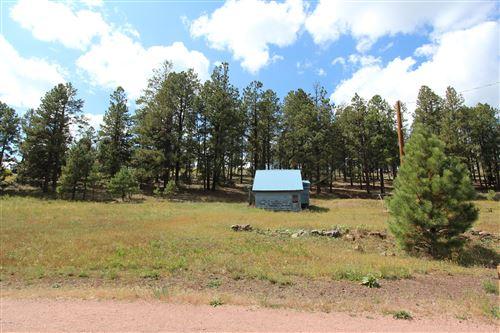 Tiny photo for 105 CR 1120, Greer, AZ 85927 (MLS # 232003)