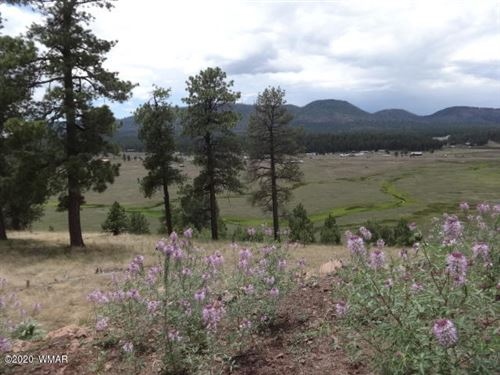 Photo of LOT 31 The  Ranch At Alpine, Alpine, AZ 85920 (MLS # 232007)