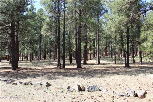Photo of 20 County Road N1067, Greer, AZ 85927 (MLS # 235007)