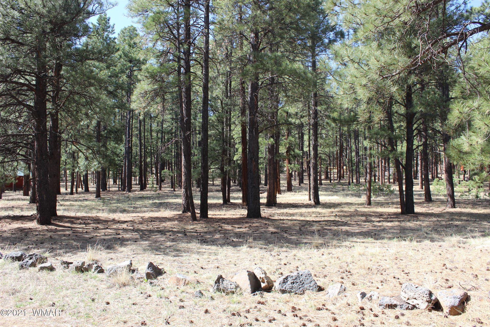 Photo for 20 County Road N1067, Greer, AZ 85927 (MLS # 235007)