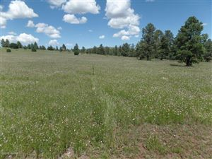 Photo of N1334 N1334, Greer, AZ 85927 (MLS # 222014)