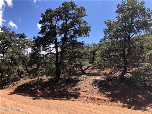 Photo of 65 County Road N3312, Vernon, AZ 85940 (MLS # 236018)
