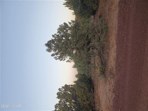 Photo of 15 County Road 3035, Concho, AZ 85924 (MLS # 238020)