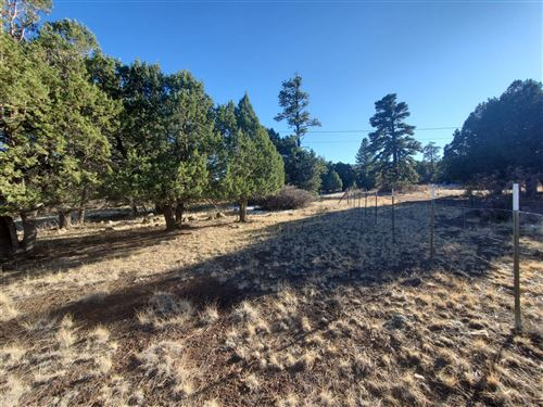 Photo of TBD CR N4035, Greer, AZ 85927 (MLS # 233025)